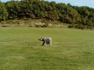 L'ours de Paussac 2017 (2)